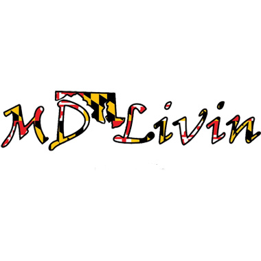 Md flag decal 12